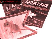 ZOORE 4 Unidades , Profesional Trampa para Ratónes