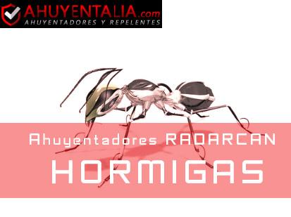 Radarcan Hormigas